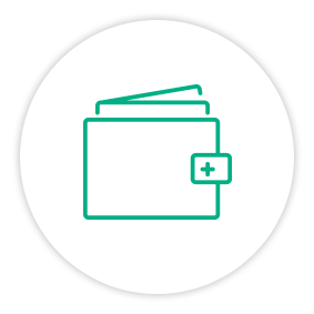 Solution Painpoint Icon Wallet Folder